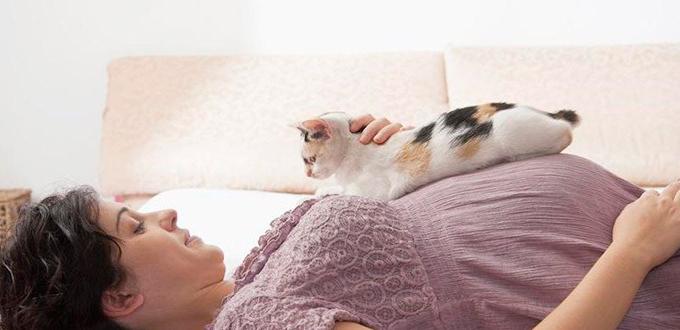 waspada virus tokso saat hamil